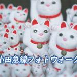 小田急線フォトウォーク!ラーメン激戦区町田と招き猫溢れる豪徳寺を歩く。