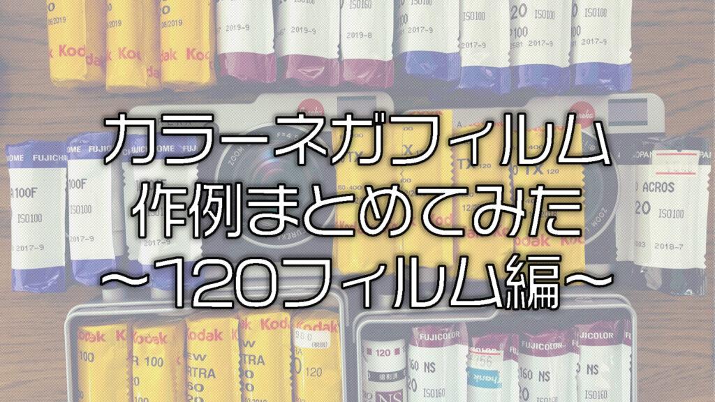 【2019年版】中判カラーネガフィルムの作例をまとめてみた〜120フィルム編〜